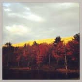 gerts knob in fall