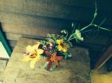 judy's flowers