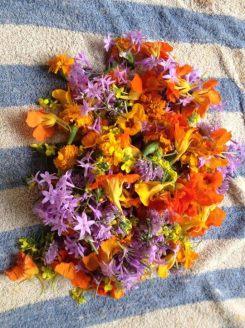edible flowers in maui