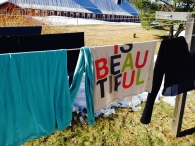 first clothesline of the spring