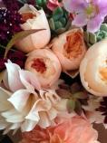 juliette roses, cafe au lait dahlias